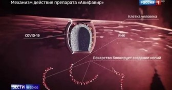 Nga điều chế thành công thuốc điều trị Covid-19