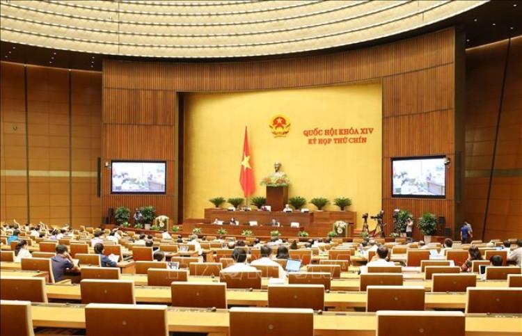 Thảo luận dự thảo Nghị quyết của Quốc hội về miễn thuế sử dụng đất nông nghiệp
