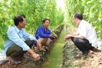 Long An đẩy mạnh chuyển dịch cơ cấu cây trồng, vật nuôi