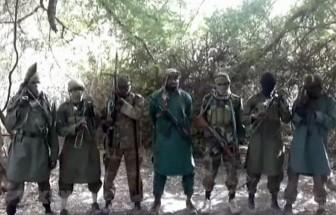 Gần 600 phần tử Boko Haram và thành viên nhóm tội phạm bị tiêu diệt