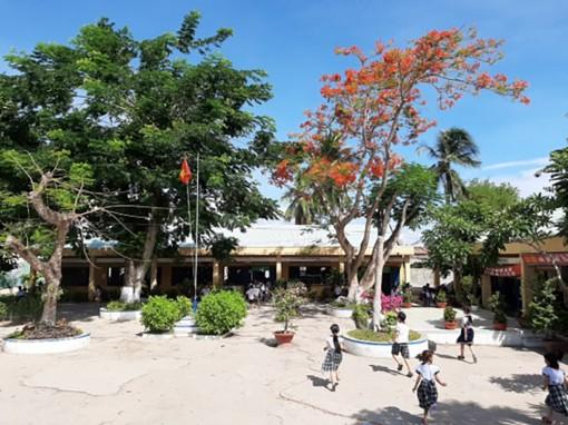 Đảm bảo an toàn về cây xanh trong trường học