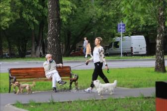 'Tâm dịch' Moskva được nới lỏng các biện pháp hạn chế