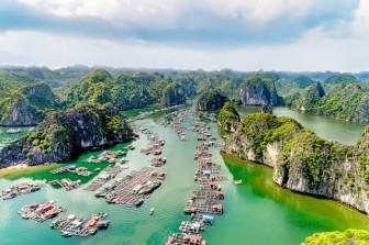 Diễn viên Leonardo DiCaprio ấn tượng với vẻ đẹp của vịnh Lan Hạ