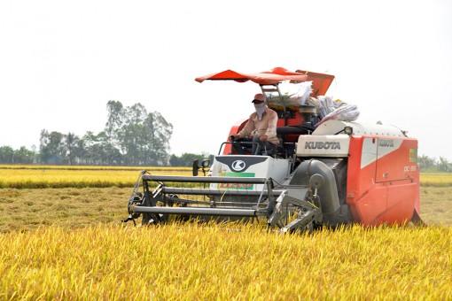 Tận dụng thế mạnh nông nghiệp để phát triển