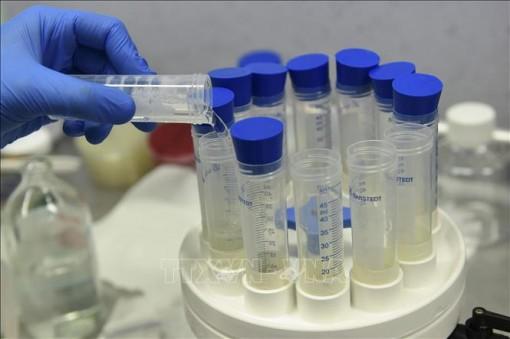 EU sẽ chi 2,4 tỷ euro để mua các loại vaccine phòng COVID-19 đang được bào chế