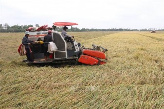 Năm 2030 nông nghiệp Việt Nam phấn đấu vào tốp 15 nước phát triển nhất thế giới