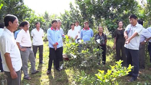 Lãnh đạo huyện Phú Tân họp mặt nông dân tiêu biểu