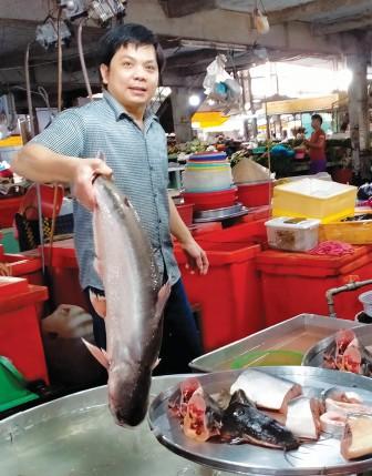 Tiêu thụ cá tra qua kênh nội địa