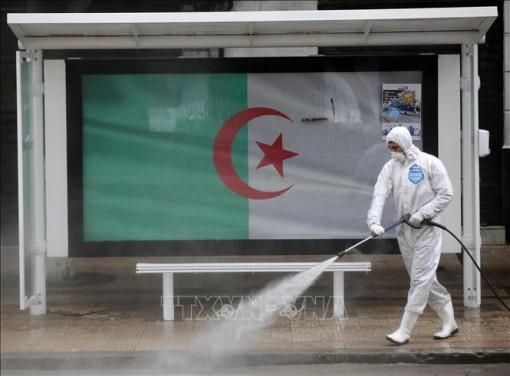 Algeria đóng cửa biên giới đến khi dịch COVID-19 được khống chế