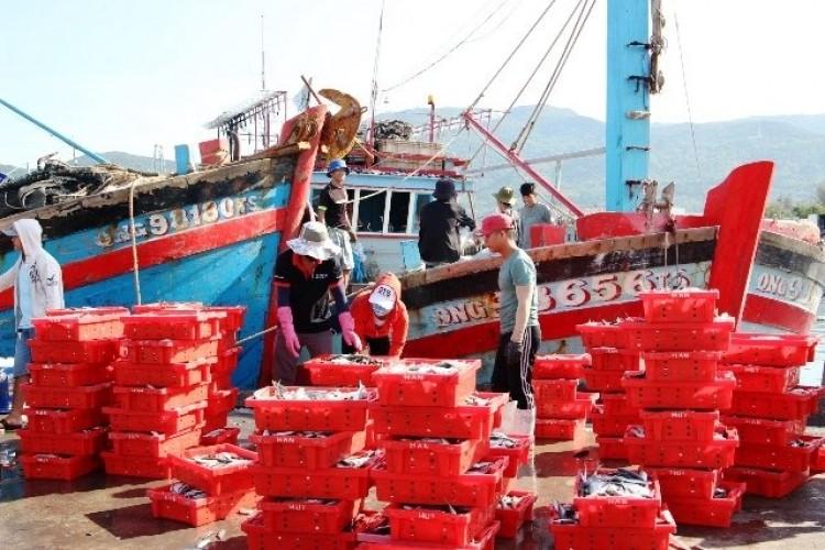 554 tàu cá ở Đà Nẵng đã lắp đặt thiết bị giám sát hành trình