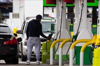Giá dầu thế giới đi lên trong tuần giao dịch vừa qua