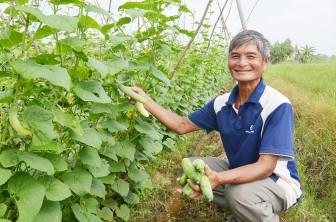 Ứng dụng khoa học - công nghệ để phát triển bền vững