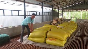 Một điển hình nông dân sản xuất giỏi