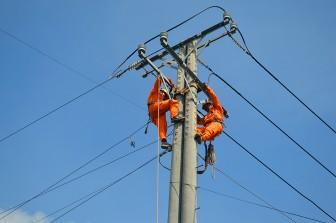 Công ty Điện lực An Giang: Diễn tập phòng, chống thiên tai và tìm kiếm cứu nạn năm 2020