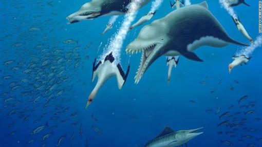 Phát hiện loài cá heo ăn thịt khổng lồ