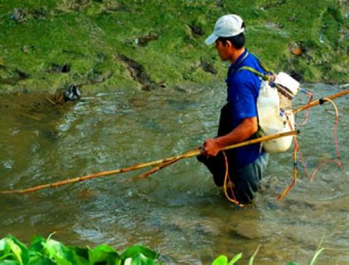 Kiểm tra, xử phạt khai thác thủy sản bằng ngư cụ cấm