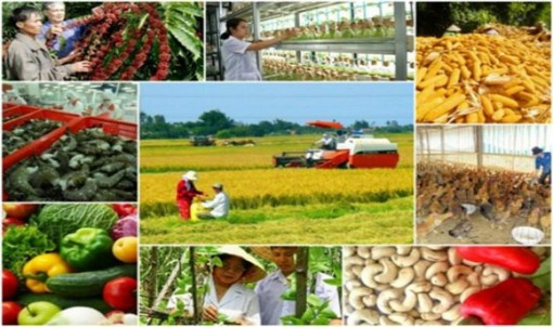 Phát triển dịch vụ tài chính mới phù hợp với khu vực nông thôn