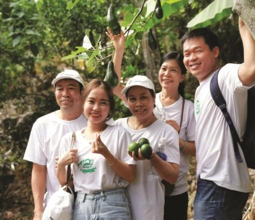 An Giang khai thác du lịch sinh thái vườn