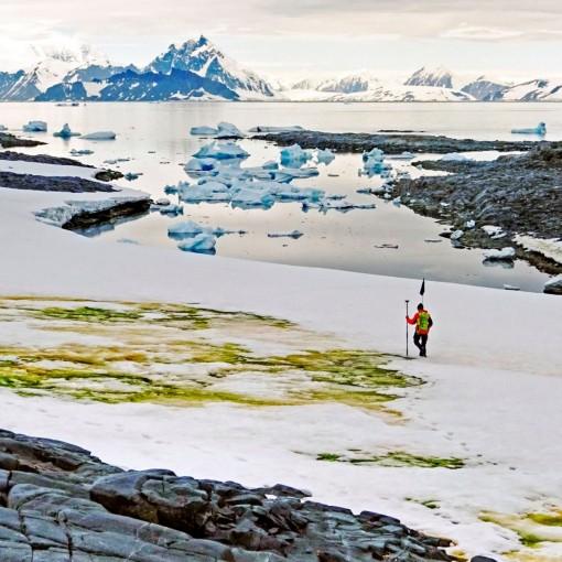 Cảnh báo tác động của con người đối với Nam cực ngày càng lớn