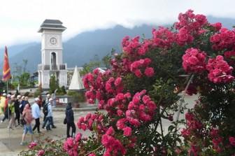 Công nhận 10 điểm du lịch trên địa bàn thị xã Sa Pa