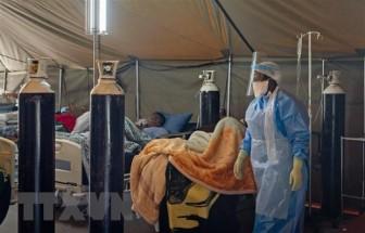Châu Phi ghi nhận hơn 787.500 trường hợp mắc COVID-19