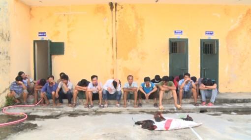 Phú Tân bắt 19 đối tượng lắc tài xỉu, đá gà ăn tiền