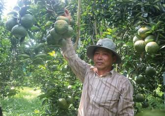 Hỗ trợ nông dân vượt khó