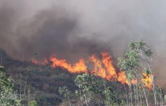 Đà Nẵng: Huy động hàng trăm người phối hợp chữa cháy rừng