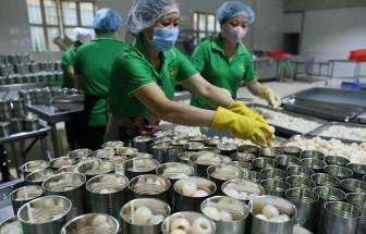 Tận dụng cơ hội EVFTA vượt qua thách thức đại dịch: Thời điểm phù hợp