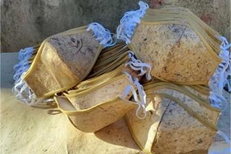 Khẩu trang làm từ cây chuối sợi giúp giảm rác thải nhựa
