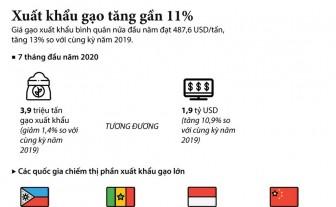 Xuất khẩu gạo trong 7 tháng đầu năm tăng gần 11%