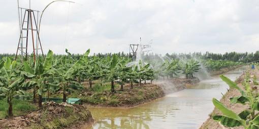 Đột phá nông nghiệp