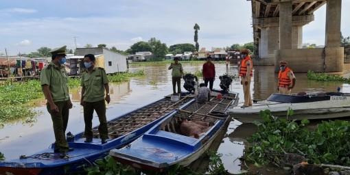 An Giang: Tạm giữ hơn 2,8 tấn heo lậu từ Campuchia