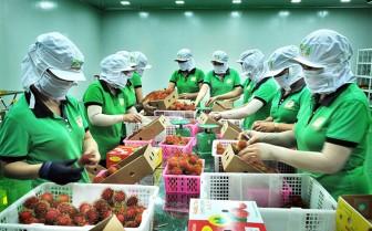 Gỡ khó cho các doanh nghiệp xuất khẩu trái cây sang Mỹ