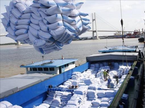 Xuất khẩu đạt mức cao nhất từ đầu năm sau khi EVFTA có hiệu lực