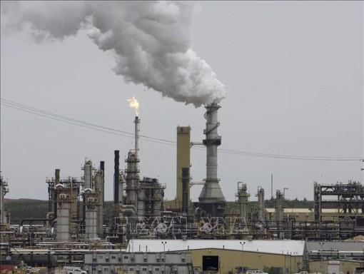 Chiều 9-9, giá dầu châu Á đảo chiều tăng trở lại