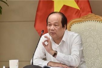 Mở đường bay thương mại đón 5.000 người vào Việt Nam mỗi tuần