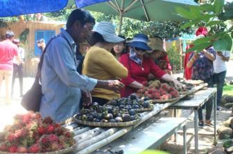 Đồng Nai: Nông dân thu tiền tỷ vì để du khách vào vườn tha hồ hái bưởi, chôm chôm