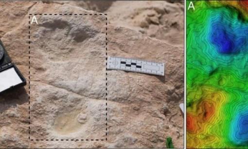 Tìm thấy dấu chân 120.000 năm tuổi