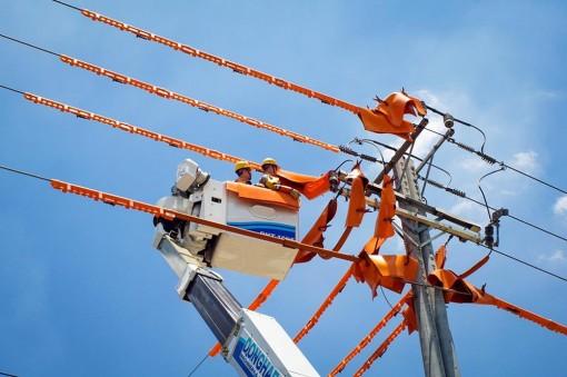 Điện lực Châu Đốc thay đổi để phục vụ khách hàng ngày càng tốt hơn