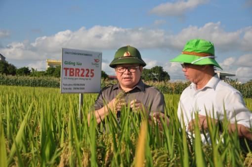 Chủ tịch Hội Nông dân Việt Nam: Doanh nghiệp phải là đầu tàu trong hỗ trợ nông dân