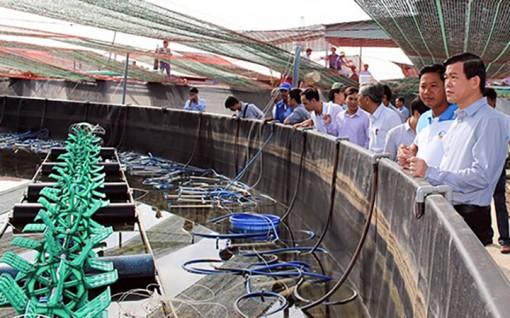 Ứng dụng công nghệ cao trong nuôi tôm