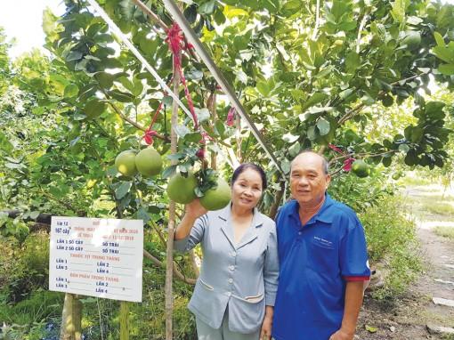 Quyết tâm tạo bứt phá nông nghiệp