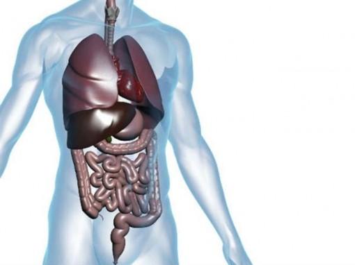 Uống nước vào buổi sáng khi bụng đói, điều gì sẽ xảy ra với cơ thể?