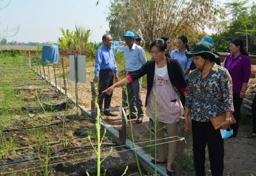 Nông dân Châu Thành thi đua sản xuất - kinh doanh giỏi