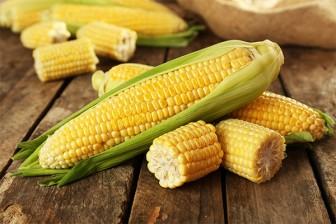 Những loại thức ăn dễ tìm giúp bạn hiếm khi ốm