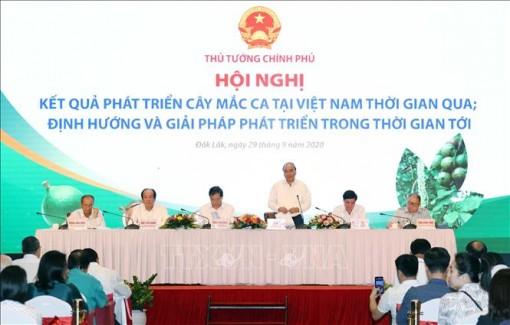 Thủ tướng Nguyễn Xuân Phúc: Cây mắc ca 'đi sau nhưng phải về trước'