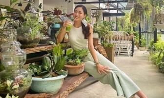 Crop top đổ bộ street style, giúp sao Việt khoe eo thon dáng gọn