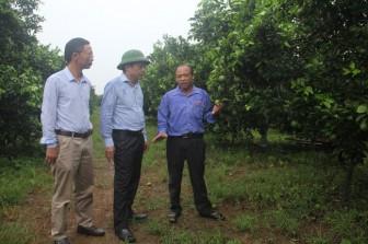 Lan tỏa động lực làm giàu cho nông dân tỉnh Nghệ An