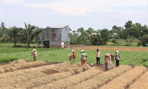 Nâng cao chất lượng đào tạo nghề, giải quyết việc làm lao động nông thôn